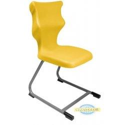 Krzesło szkolne C Line - rozmiar 6 (159-188 cm)