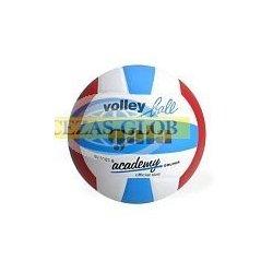Piłka do siatkówki GALA Academy BV 5181S